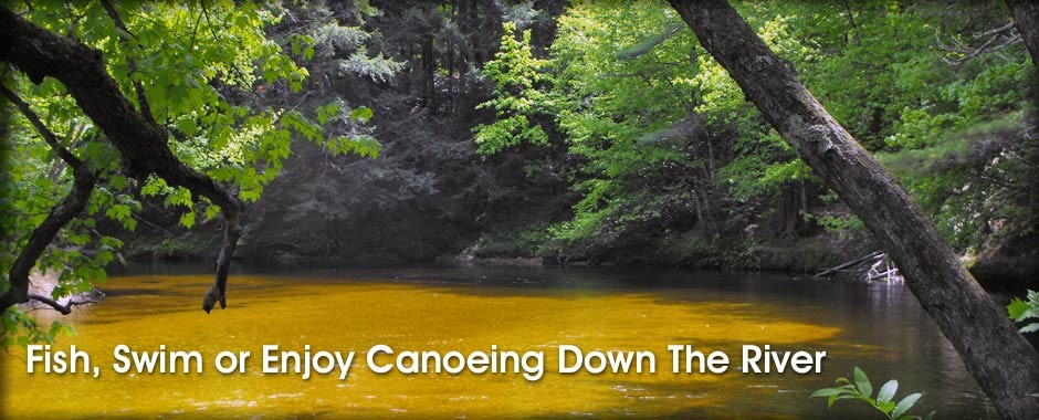 Fish, Swim or enjoy Canoeing Down the River